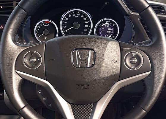 Multifunction Steering Wheel (Audio, Video Command, Hands Free & Cruise Control)