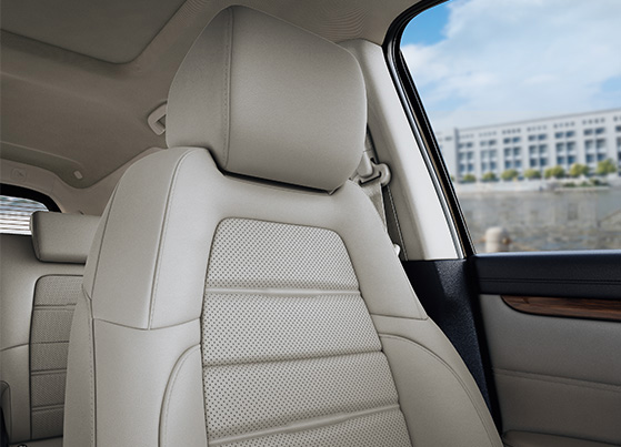 Premium Ivory Leather Upholstery